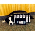 1996 - Bailey with our first video series - sold thousands of copies